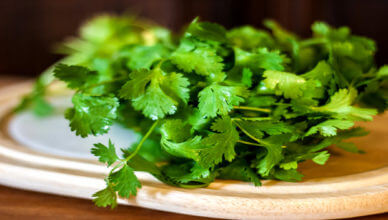 cilantro benefits